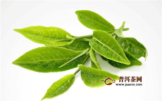 肉桂茶属于红茶吗?属于六大茶类中的乌龙茶!