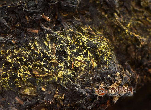 """黑茶如何区分金花和发霉?先看""""金花""""的分布"""