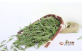 碧螺春绿茶多少钱一斤?怎么选购碧螺春?