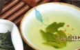 六安瓜片怎么冲泡?要选择什么茶具?