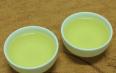 乌龙茶与黄芪一起泡吗?乌龙茶的适宜搭配