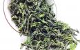 绿茶旗下品牌有哪些?如何选购绿茶?