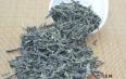 绿茶提取物的美容功效,绿茶的美容作用
