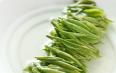绿茶有哪些及功效,绿茶的分类