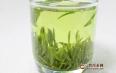 绿茶和白茶哪个贵?绿茶、白茶的价格简述