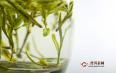 绿茶什么品种比较好?绿茶的品种、种类