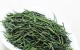 长期喝绿茶有什么好处?喝绿茶的功效