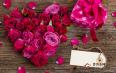 苦瓜玫瑰花茶能减肥吗?苦瓜玫瑰花茶的功效