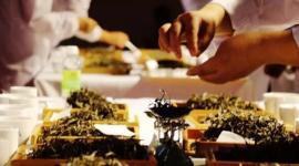 传承普洱茶匠心工艺,品读勐海味拼配魅力 首届勐海(国际)拼配大赛即将起航