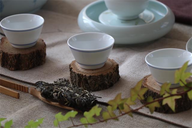 1分钟!带你了解什么是干湿泡茶法