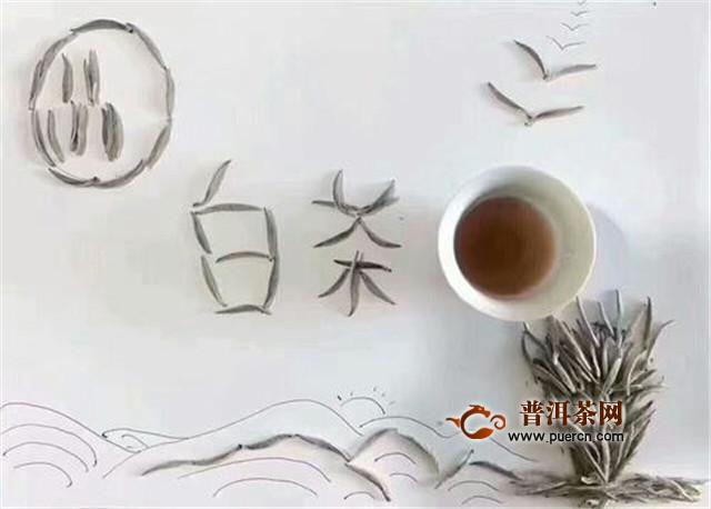 福鼎大白茶是绿茶吗
