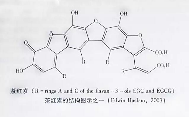 普洱茶中的色素研究(二)茶红素类