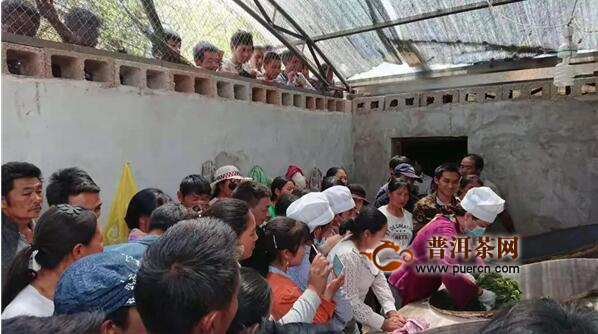 一个边陲山村的脱贫样本:茶叶产业链可持续发展局面正在形成