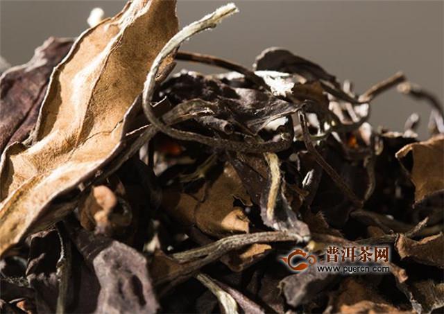 福鼎白茶有多少年历史?4000多年前白茶源起