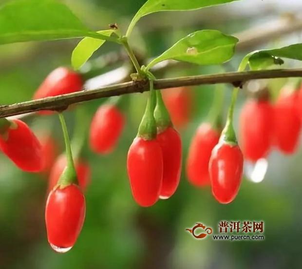 红枣枸杞玫瑰花茶怎么泡?红枣、枸杞、玫瑰花茶的功效