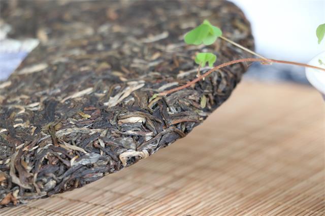 茶文化景观保护研究和可持续发展国际研讨会在云南澜沧举行
