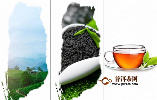 藏茶产地,