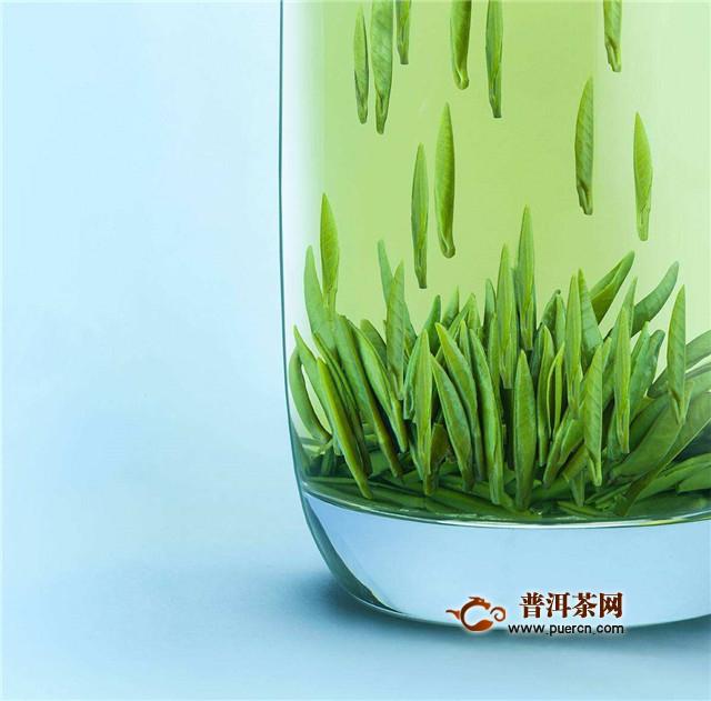 怎么区分红茶和绿茶?看这6大区别!