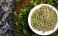 黄茶什么季节喝最好?黄茶最佳饮用时间