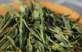 黄茶的种类有哪些?名优黄茶种类