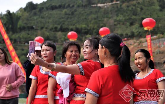 云南双江:冰岛茶小镇正式开工建设