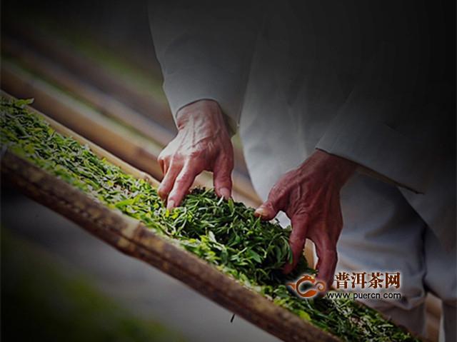 齐山翠眉茶怎么制作?齐山翠眉茶制作工艺流程