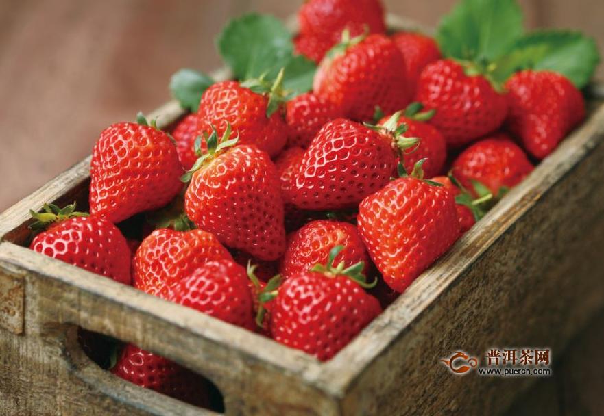 大圩草莓采摘时间,各类草莓的种类