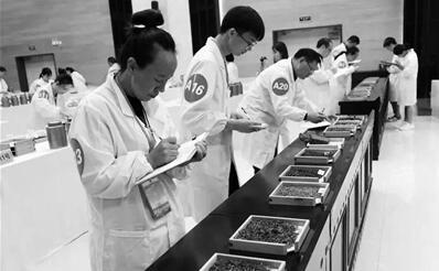 云南省第十六届茶叶行业技能竞赛开赛