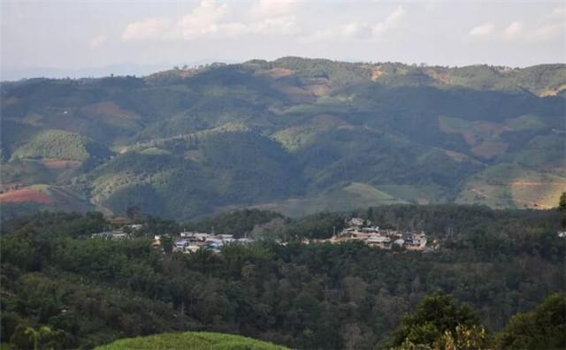 勐阿镇贺建村做好冬季管理,提高茶叶效益