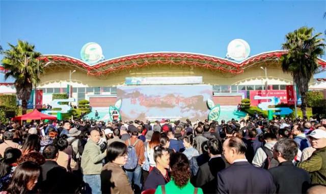 第十三届海峡两岸茶业博览会圆满落幕!