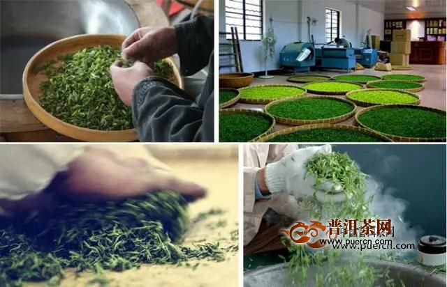 仁化白毛茶制作工艺流程