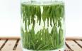 竹叶青属于什么类型茶?