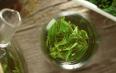 竹叶青茶跟毛尖的区别