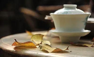 枸杞菊花茶一起喝好处多多!