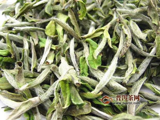 白牡丹茶五年的价格多少钱一斤