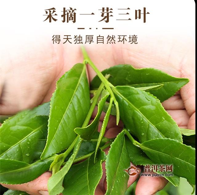 乌龙茶和绿茶的功效的区别