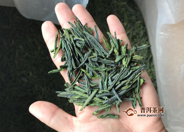 六安瓜片茶什么季节喝?
