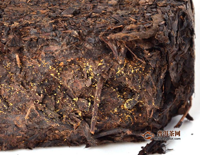 泾渭茯茶能存放多久?