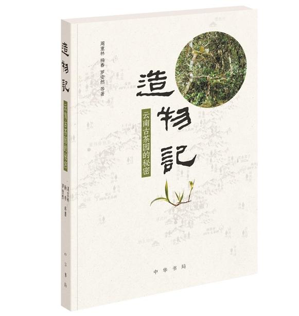 解读古茶树的滋味之源