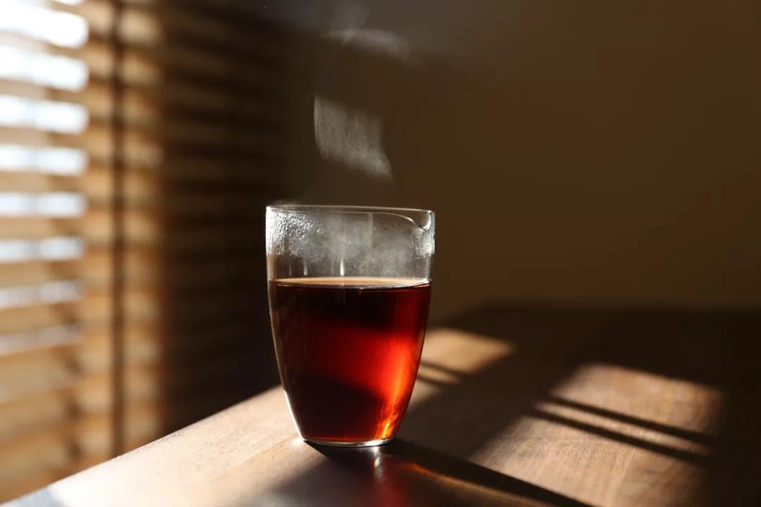 2019国际茶业大会纵论茶产业可持续发展