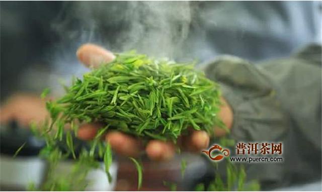 炒青绿茶是什么意思?怎么判断?