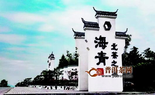 西海岸新区海青镇全产业链发展茶产业 年干茶产值3亿多元