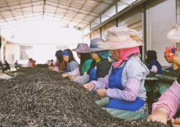 """不良茶商、伪茶大师最爱挑衅的话题——普洱茶的""""拼配和纯料"""""""