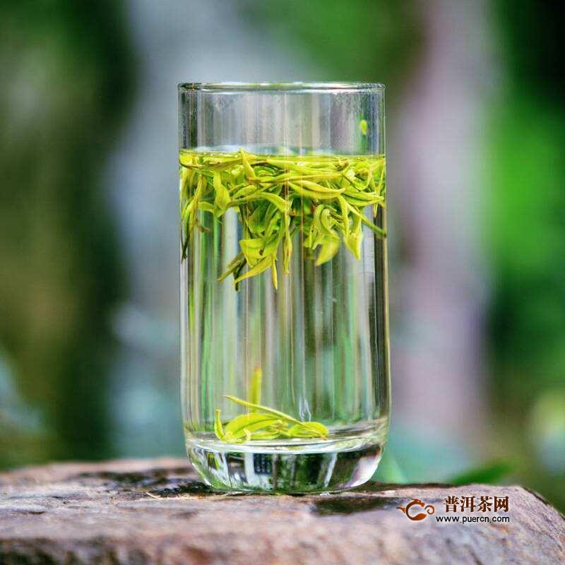 喝靖安白茶应注意哪些禁忌?