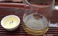 白牡丹茶新茶如何保存?