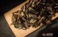 老枞贡眉是什么茶?