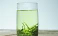 绿茶和毛尖的区别功效一样吗