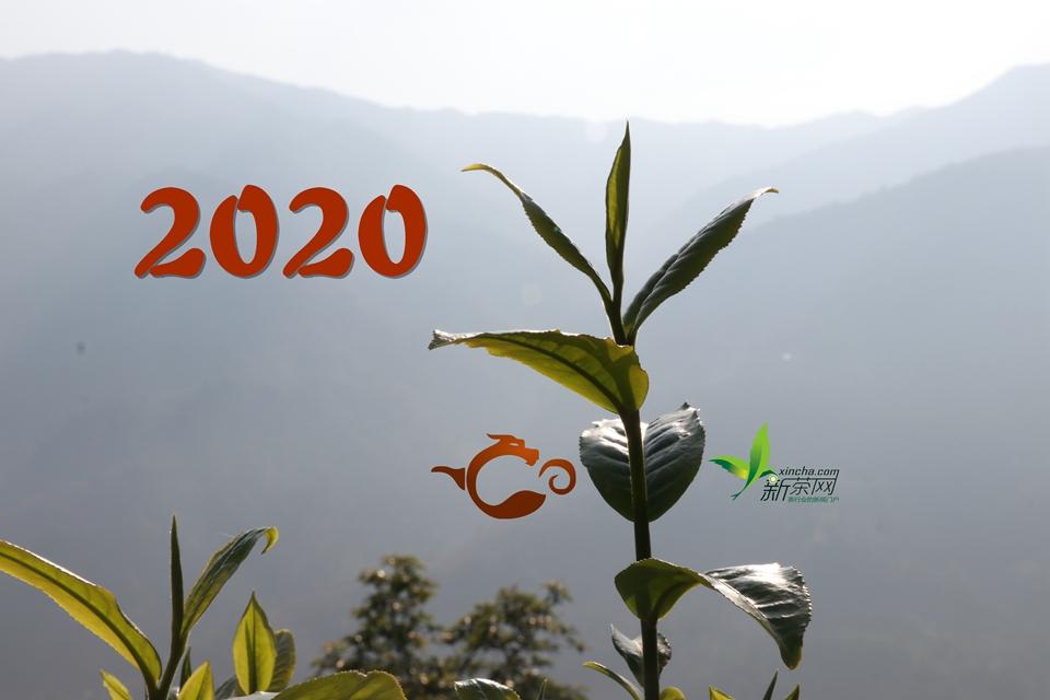 新年新气象,2020砥砺前行!