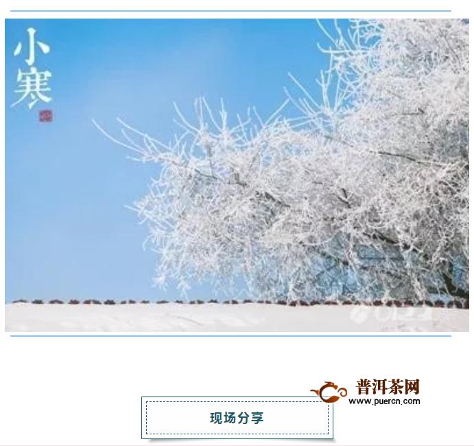 小寒沙龙 |滇红茶能否再次成为云南的代表符号?