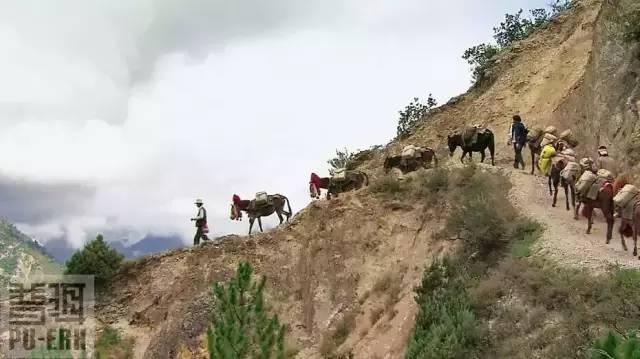 茶马古道上的分段运输